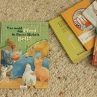 """""""Was macht das Pferd in Bauer Michels Bett?"""" von Regina M. Ehlbeck und Dorothea Ackroyd"""