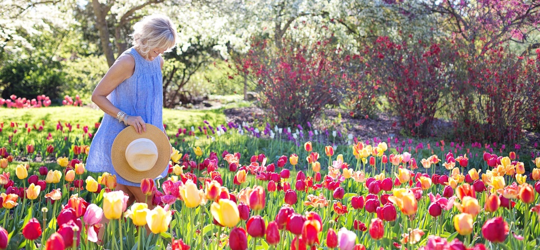 Einmal Frühling, bitte!
