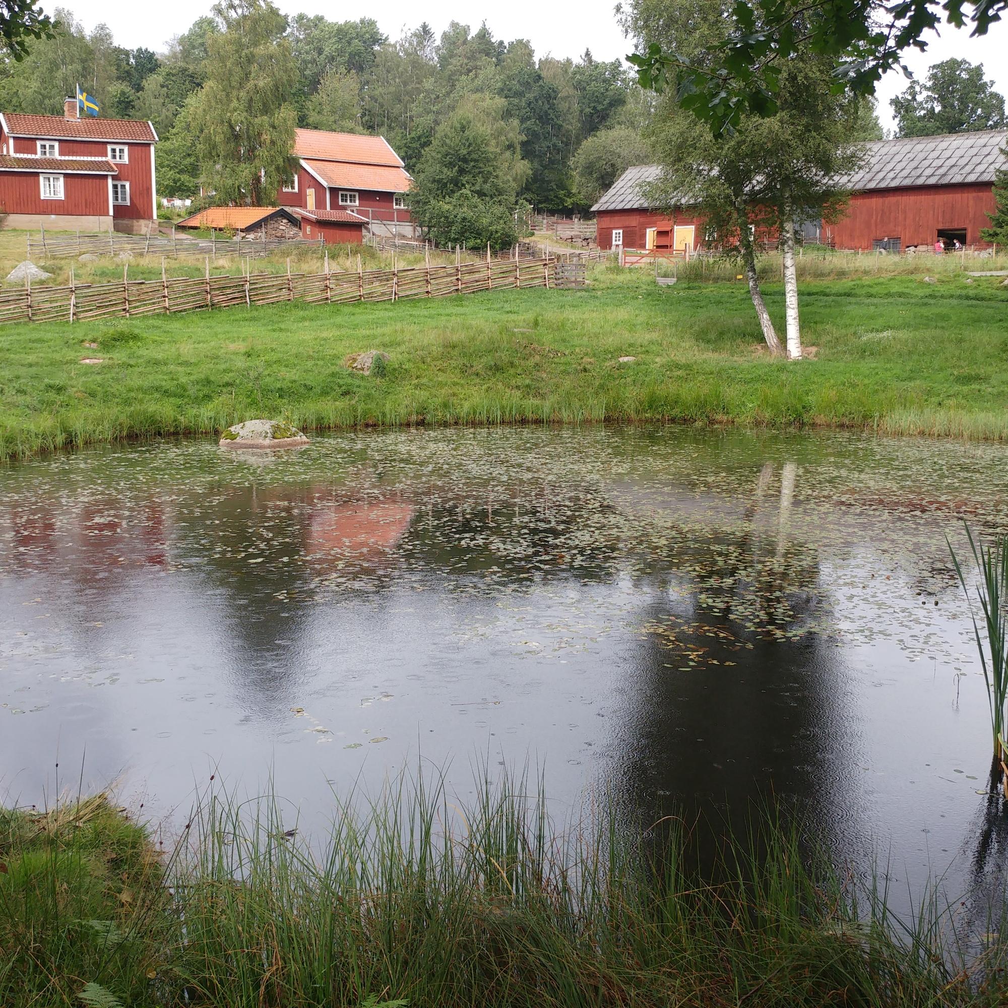 Katthult ist ein großer, weitläufiger Ort, an dem man viel Natur entdecken kann, (c) Krümel Blog