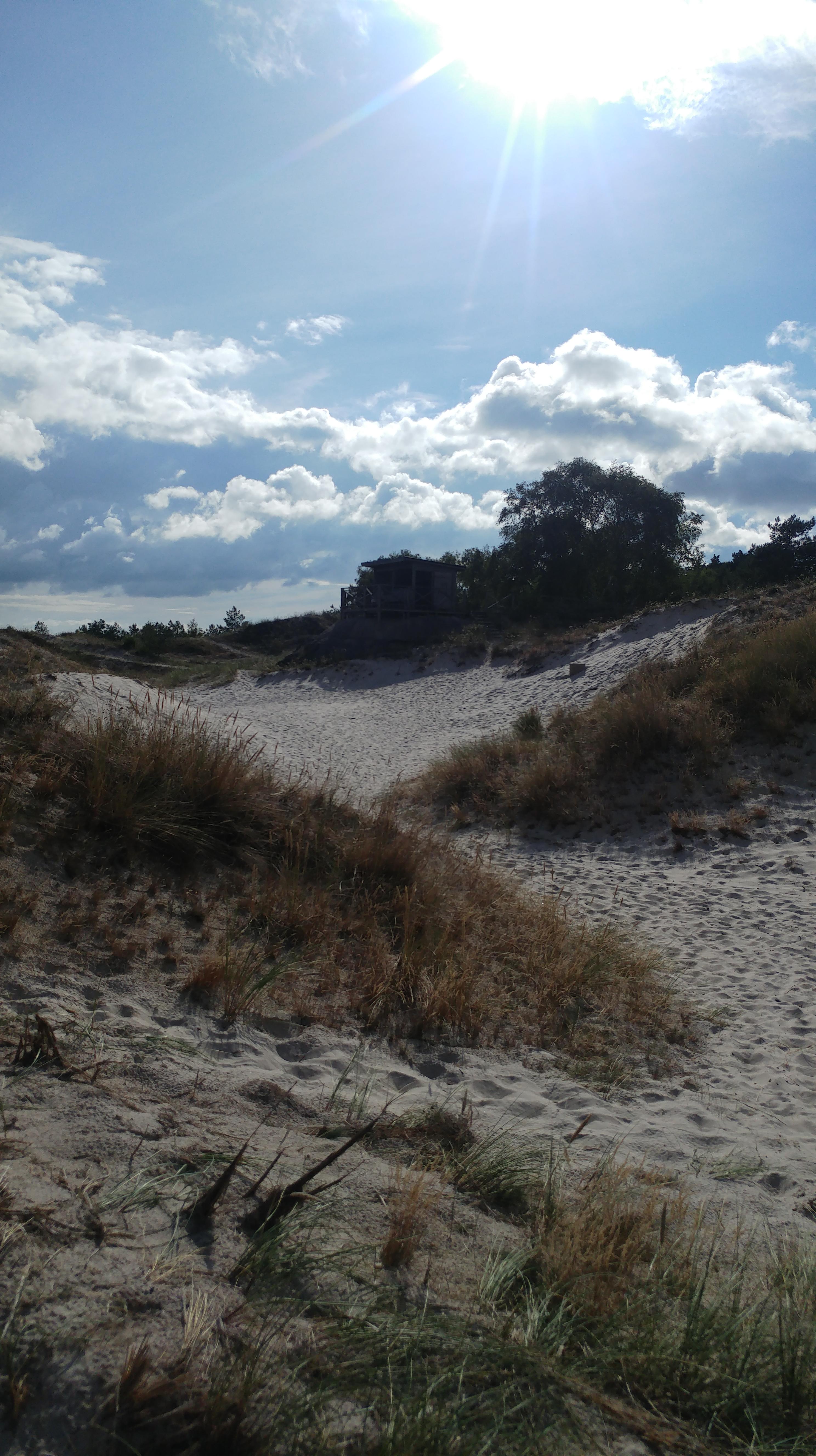 Sandhammaren gilt als schönster Sandstrand in ganz Schweden, (c) Krümel Blog